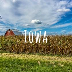 Iowa Experience